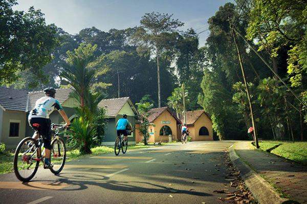 Terdapat juga basikal untuk sewaan pengunjung