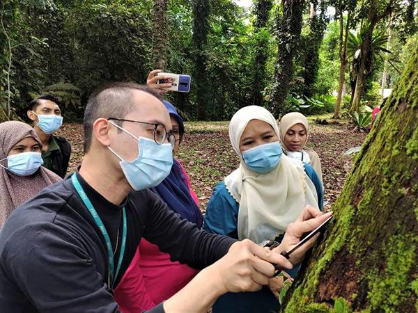 Cheah (depan) menunjukkan populasi lumut yang tumbuh pada batang pokok.