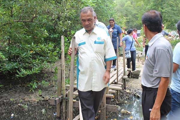 mangrove conservation in Penang
